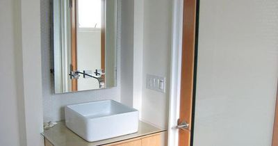 Another idea for the tiny bathroom--big medicine cabinet and even a little counter space.