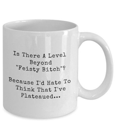 Feisty bitch dirty rude vulgar white ceramic coffee mug gag gift| batchelor party |batchelorette party | $15.95