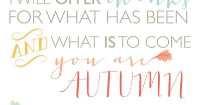 Beautiful thanksgiving 8x10 free printable art from