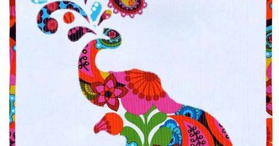 Free Pattern Paisley Splash Elephant Quilt By Myiesha
