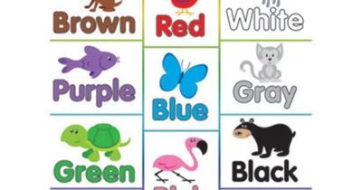"""Basic Color Chart with Names 