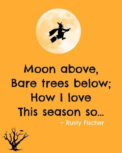 """Moon above, Bare trees below; How I love, This season so..."" ~Rusty Fischer - Halloween poem"