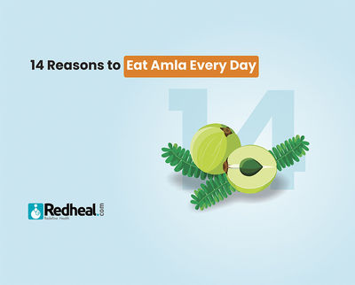 Did you know that a single amla has the vitamin C content that is equivalent to that of 20 oranges? Check our latest blog article to understand its numerous health benefits. https://www.redheal.com/blog/lifestyle/14-reasons-to-eat-amla-every-day/