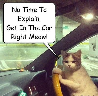 No Time To Explain. Get In The Car!!