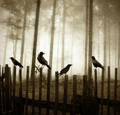 Crows on the fence... can pick them up at the dollar store during season if you're quick.