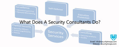 What-Does-A-Security-Consultants-Do-1.jpg
