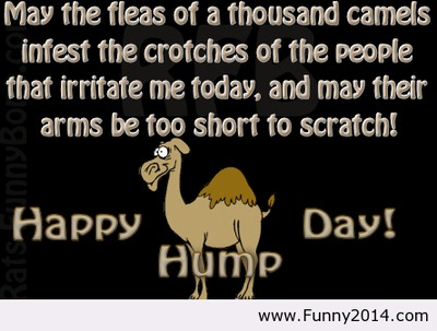 Happy hump day quote