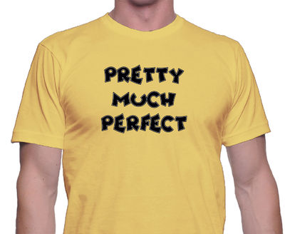 Pretty Much Perfect T Shirt may be a clever joke on your ego. This classic, casual shirt could be a gift for your hubby, son or Dad. $24.00