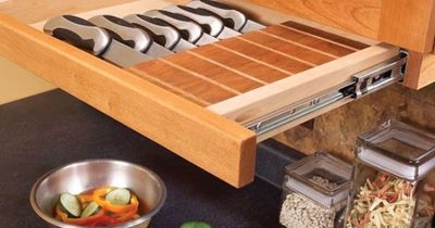 Under-cabinet knife block drawer - Away from the kids reach and off the counter! (slide out instead of down, might be good for spices too)