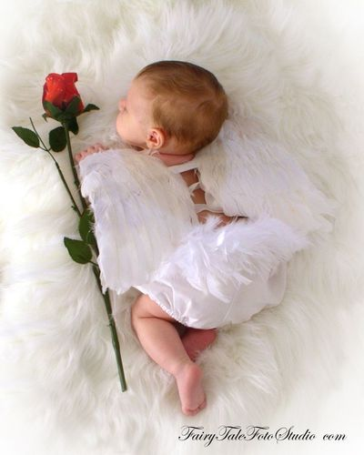 Newborn baby angel with rose cupid valentines day portrait poses photo idea