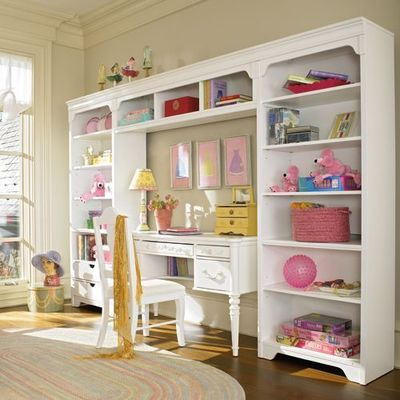 Crown molding on bookcases ... Great look for organizing children's toys...