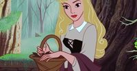 Briar Rose (Princess Aurora) I always thought she was one of the prettiest princesses