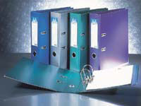 EASTLIGHT Metalix A4 purple lever arch file with 70mm A one-piece solid greyboard, material covered and lined with metallic look polypropylene.Fitted with a steel finger ringSteel-nickel plated arch lock mechanism, steel-tin plated shoe and compressor ba ...