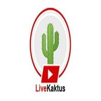 LiveKaktus, Frequently, we supply an authoritative, intelligent, and lucid for the amazing flow of details about the technology, Lifestyle, Health, News, and Entertainment etc. https://livekaktus.com