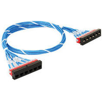 HiPerLink Copper Solutions are featured with Cassette-to-Cassette Copper Assembly to allow quick and easy installations between cross-connects and has Two 6-Port Cassettes each containing six CAT 6 UTP Modular Connectors(8P8C) among various other ...