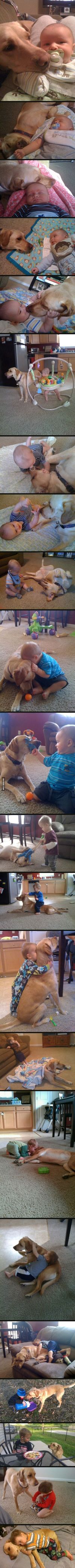 Best friends for 2 1/2 years. My heart just melted