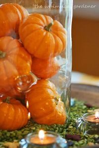 fall...decor or for a wedding shower in the fall
