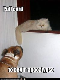Hahaha (actually had a husky that would pull our cat from any perch by pulling on the tail... never hurt the cat... it was always gentle but persistant... was hysterical to watch.