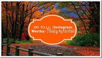 20 Fall (Instagram Worthy) Family Activities