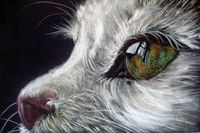 Blog of an Art Admirer: Pastel Paintings by Paul Knight. Cats