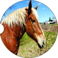 2 Absorbent Car Coasters of Horses #8. Car Accessories for her, Auto Coaster, Coaster, Cup Holder Coaster, Gift For Her, For Him $14.00