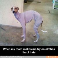 Shopping with parents / iFunny :)