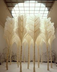 beautiful paper. This is an amazing installation. Wow!