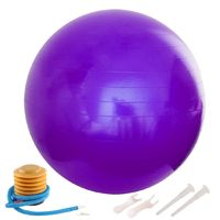65cm Anti-Burst Yoga Balloon Gym Balance Stability Fitness Ball Gymnastic Exercise with Air Pump Yoga Accessories Home Workout $40.99
