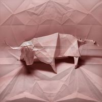 superimposing origami on its unfolded self (5)