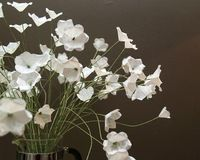 How to Make Simple White Paper Flowers