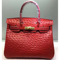 Hermes Birkin Bag Ostrich Leather Gold Hardware In Red