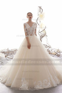 Princess Lace Ball Gown Wedding Dress with Sleeves TB31