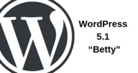WordPress 5.1 �€œBetty�€ Available With Editor Performance and Site Health