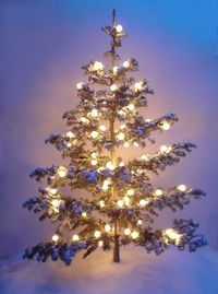 The perfect kind of Jul tree!!!! Plenty of space between the branches, for glistening ornaments to hang and sparkle.