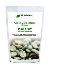 Green Coffee Beans Provider