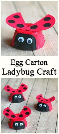 Here is an easy ladybug craft for kids using egg cartons! You'll just need a few common supplies to make these cute little insects. This art project is perfect