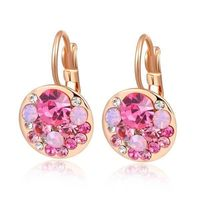 Rose Gold Plated Multiple Stones Inlaid Earrings £17.95