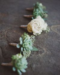 succulent bouts...lovely take and slightly different than flowers.