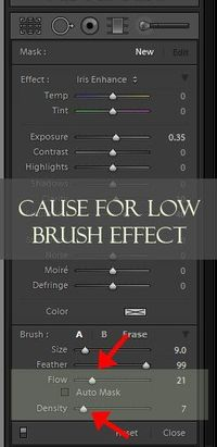 You have the awesome Pretty Preset brushes and you love them, use them every time you edit. You are going on down the editing yellow brick road happily and merr