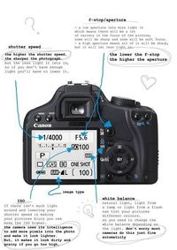 My top recommendations for Canon camera lenses for Canon Digital Rebel cameras (like mine, hint, hint).