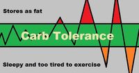 Visual Guide To Carb Tolerance And Weight Gain