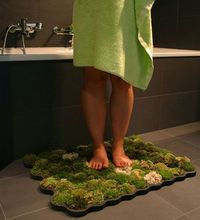 In the spirit of natural living and even being eco-chic, creating your own moss bath mat is a unique craft project. A moss shower mat utilizes live moss to prov