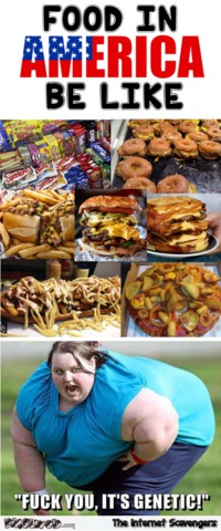 Food in America be like humor #funny #humor #lol #funnypictures #funnymemes #PMSLweb