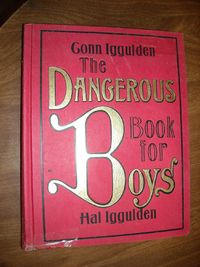 The Dangerous Book for Boys Conn Iggulden Hal Iggulden (2007) for sale at Wenzel Thrifty Nickel ecrater store