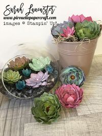 create beautiful paper creations that look real with the oh so succulent bundle from #stampinup click for details of card stocks and inks used | Sarah Lancaster pirouette paper craft