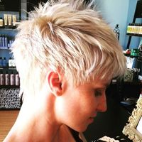 284 Likes, 16 Comments - Sarasota Hair Colorist (