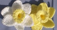 "Daffodils of Spring - Flower is about 5"" wide Size F US/4.0mm crochet hook Yarn needle Caron Simply Soft acrylic yarn in white (petals) and yellow (cup) center (make 1): Ch 12, join to beginning to make a circle. Sc in each of ..."