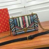 Small Diorama Bag in Embroidered Calfskin Colorstripes