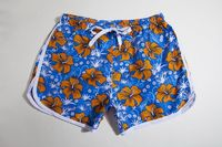Colorful Swimming Trunks $27.99