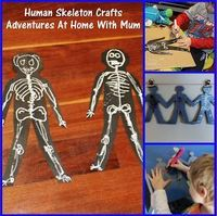 Adventures at home with Mum: Human Skeleton Craft